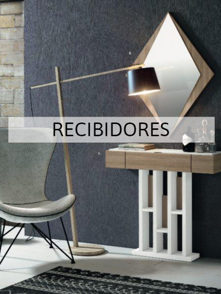RECIBIDORES (5)